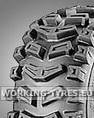 Neumáticos Quitanieves - Carlisle X-Trac 13x5.00-6 2PR TL