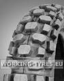 Neumáticos Enduro, Cross - Maxxis C803 3.00-12 47J TT