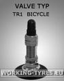 Cámara de aire -  cortacésped y carros - Càmara 12 1/2x2 1/4 TR1